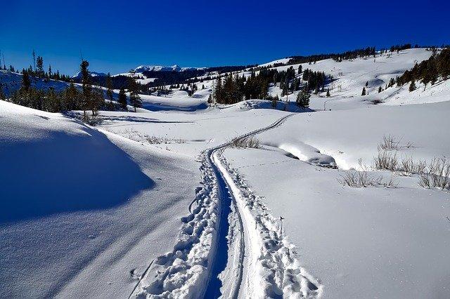 Zimní běžkování